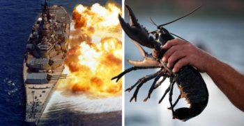Războiul homarilor dintre Franța și Brazilia, un conflict armat pentru o delicatesă
