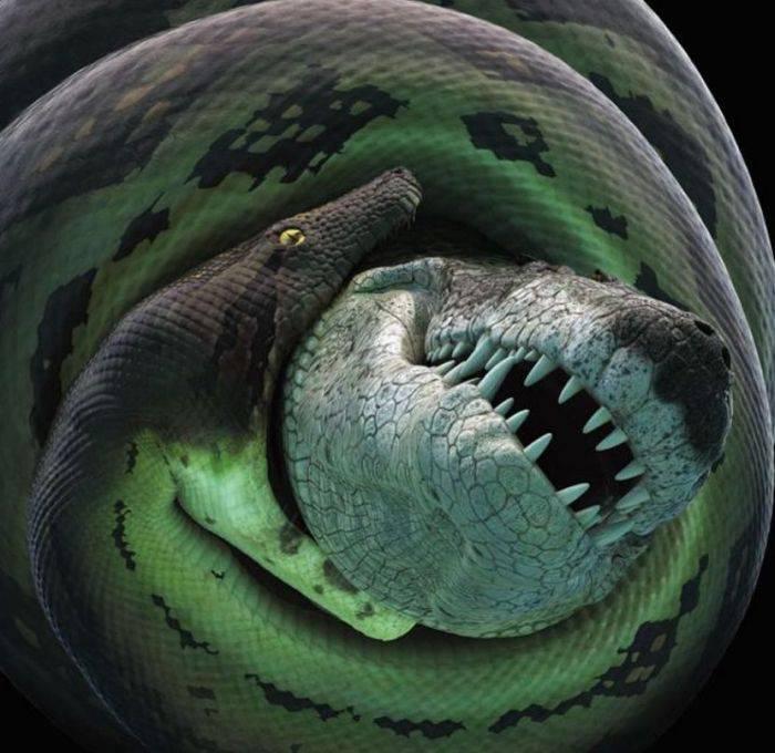 curiozități despre șerpi