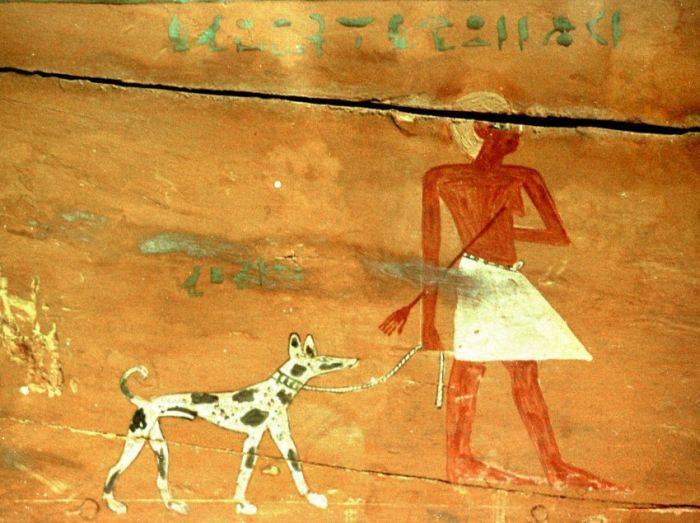 Curiozități despre Egiptul Antic