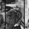 13 adevăruri crunte despre Al Doilea Război Mondial, cel mai devastator conflict din istorie featured_compressed