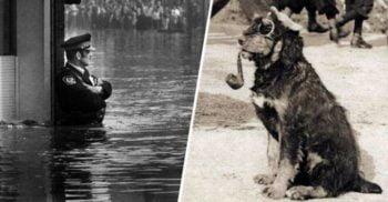 13 fotografii emblematice din clipe care au marcat istoria
