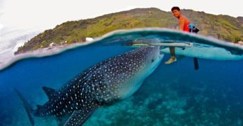 9 curiozități despre oceane, dimensiunea misterioasă a planetei Pământ