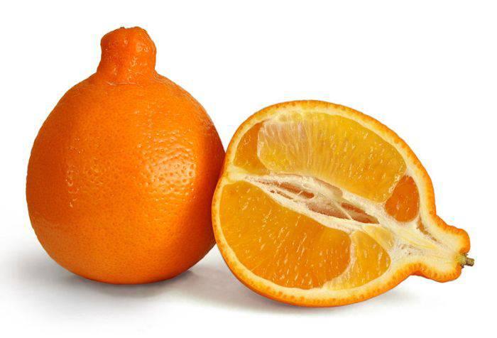 fructe hibride