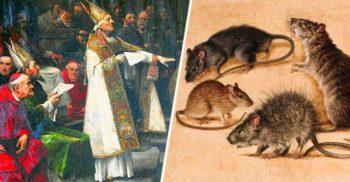 Cazul bizar al șobolanilor judecați pentru că au mâncat recolta de orz featured_compressed