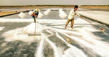 13 curiozități despre sare: De la sarea-n asfalt, la sarea-n bucate