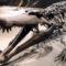 Descoperire rară în zona Hațeg O nouă specie de crocodil preistoric FEATURED.fw_compressed