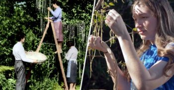 Ziua în care BBC și-a convins publicul că spaghetele cresc în copaci featured_compressed