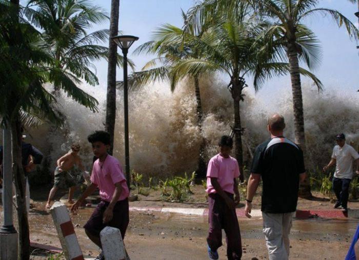 curiozități despre tsunami