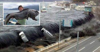 10 adevăruri despre dezastrul de la Fukushima, cea mai recentă catastrofă nucleară
