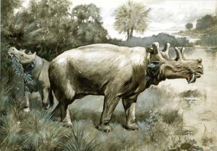 cele mai ciudate animale dispărute