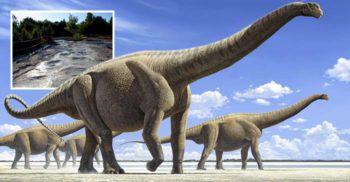 Drumul uriașilor: Cea mai lungă potecă din lume cu urme de dinozauri