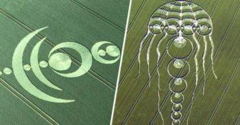 Cercurile din lanuri: Mesaje din alte lumi sau păcăleli elaborate?