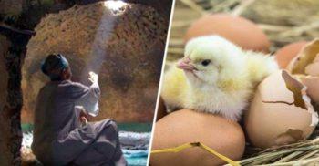 """Invenția """"imposibil de înțeles"""": Incubatoarele de ouă din Egiptul Antic"""