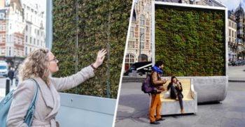 """CityTree, """"băncile vii"""" care pot curăța aerul din orașele poluate"""