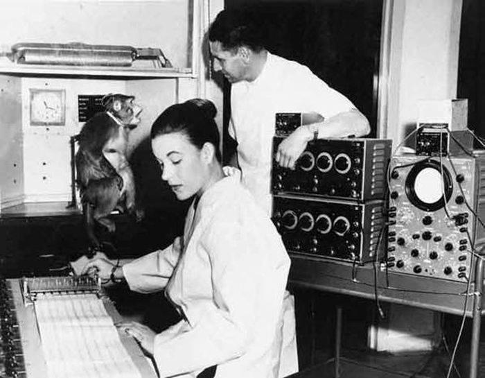 Imagine din laborator