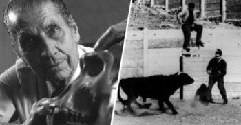Jose Delgado, omul care a învins un taur prin controlul minții