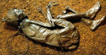 Omul de Tollund și misterul cadavrelor de mlaștină descoperite în Europa