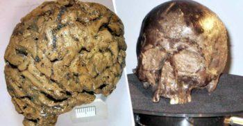 """""""I s-a întâmplat ceva groaznic."""" Creierul uman conservat vreme de 2.600 de ani"""