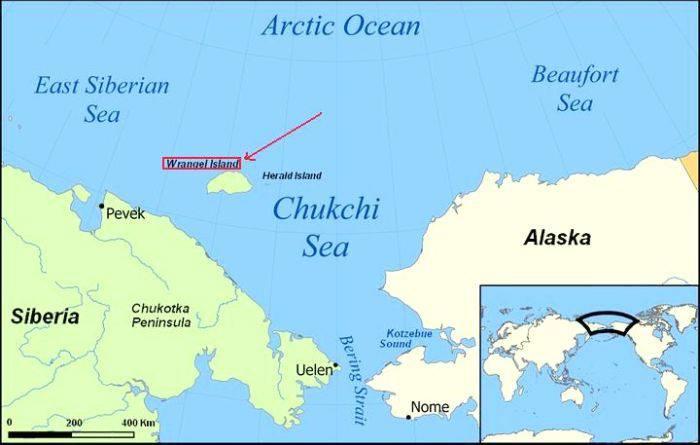 Insula Wrangel