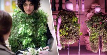 Un designer a creat cojoace pe care cresc ridichi, varză și căpșuni udate cu urina purtătorului