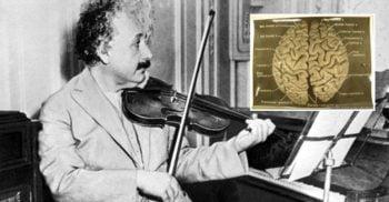 Bizara călătorie post-mortem a creierului lui Albert Einstein