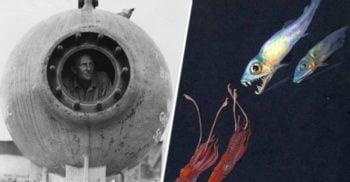 Batisfera: Prima navă care a pătruns în măruntaiele oceanului