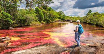 Cano Cristales râul arată ca un curcubeu timp de șase luni pe an