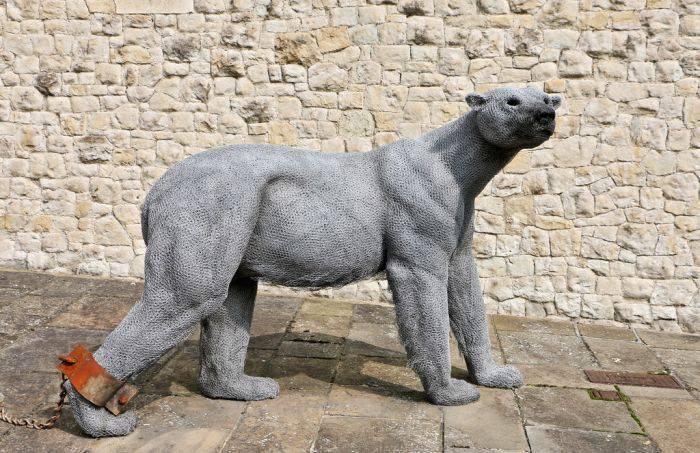 Curiozitati despre Norvegia - Urs polar