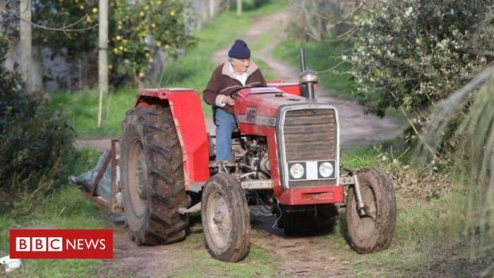 Mujica tractor