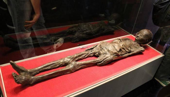 Mumia Liber Linteus