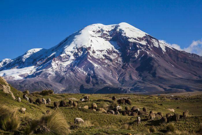 Chimborazo 02