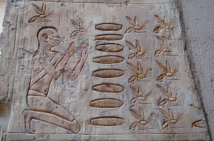Miere egipteana