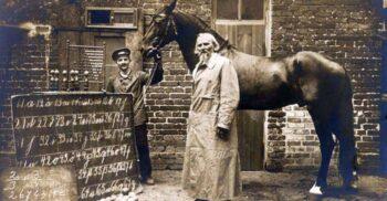 Hans cel Isteț: Secretul calului care știa să socotească