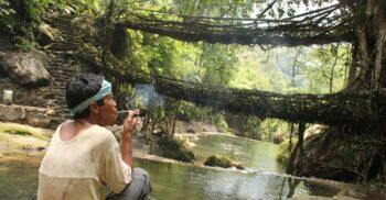 Arhitectura naturală: Podurile vii din Meghalaya, ținutul norilor