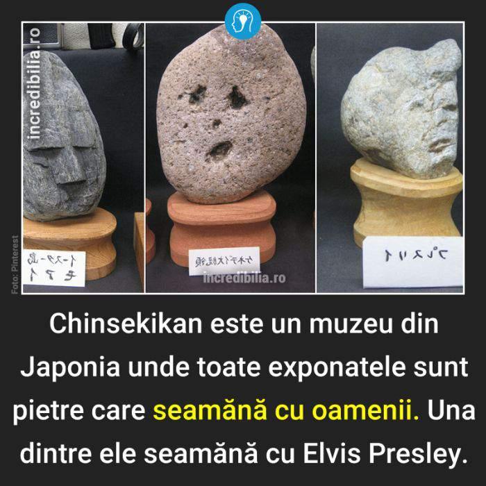 455. Muzeu japonia pietre ce seamana cu oamenii_55_red