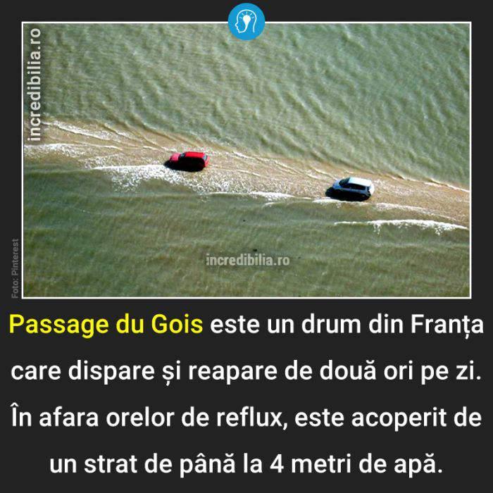 463. passage du gois_63_red
