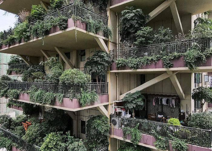 Complexul rezidential 05