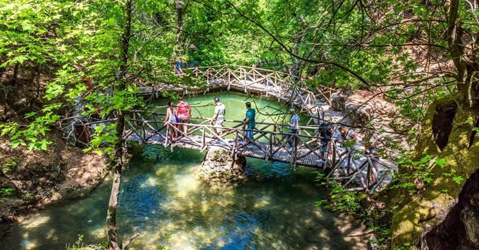 Petaloudes valea invadată de milioane de fluturi în fiecare vară