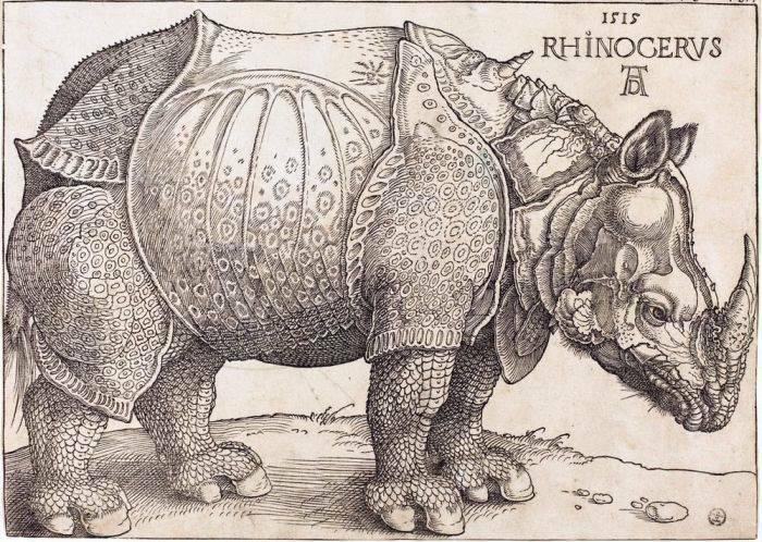 Rinocerul lui Durer