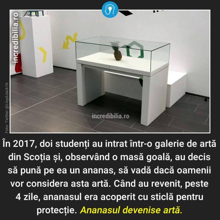 521. ananas arta scotia_20_red_compressed