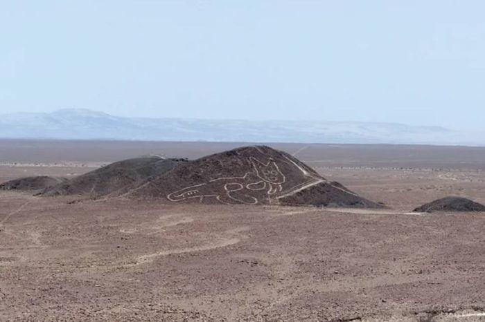 Pisica Nazca 01