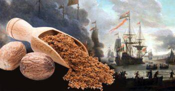 Insulele Banda și războaiele nucșoarei, un condiment mai valoros decât aurul