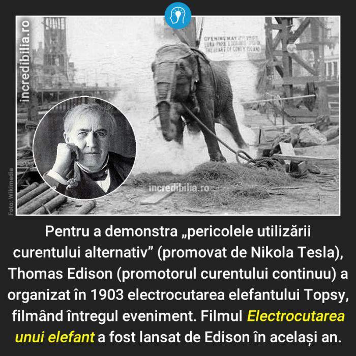 773. electrocutarea elefantului topsy_169_red