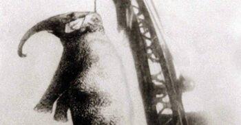 Mary, elefantul condamnat la moarte și spânzurat cu macaraua