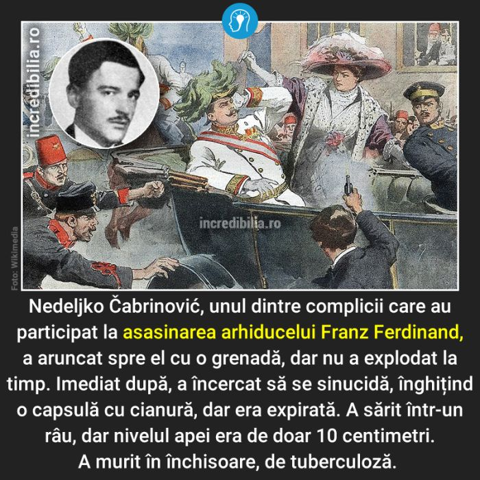 934. nedeljko cambrinovic franz ferdinand asasinare_32_red