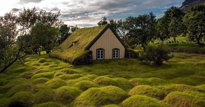 8 lucruri interesante despre Islanda, țara în care nu există țânțari featured_compressed