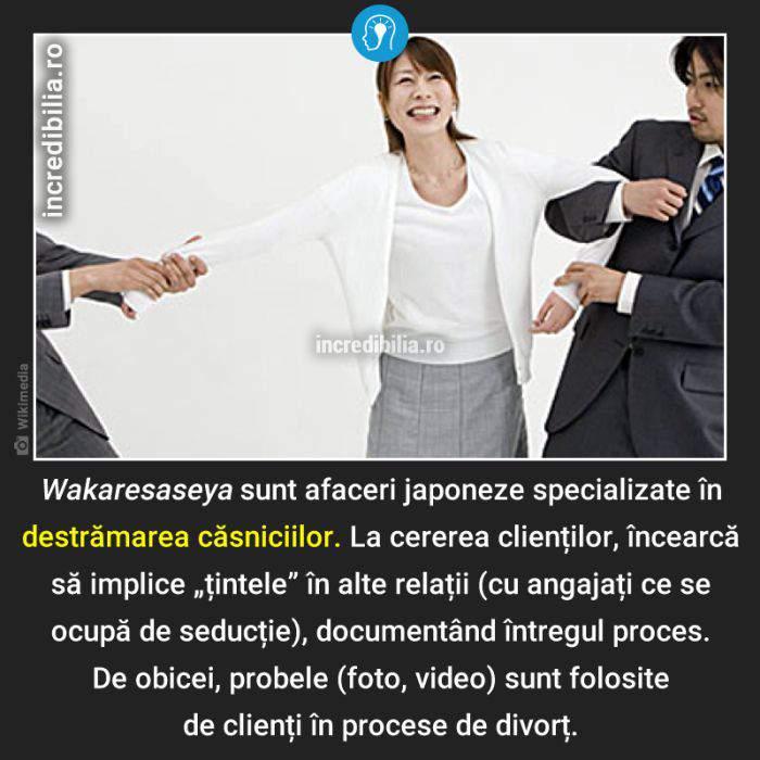 1321. japonia afaceri seductie_20_red_compressed