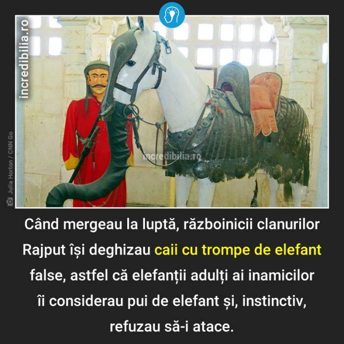 1322. caii cu trompe de elefant_21_red_compressed