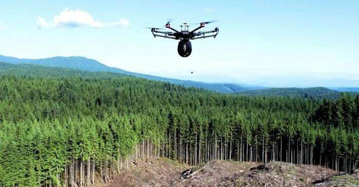 O companie canadiană vrea să planteze cu dronele un miliard de copaci featured_compressed