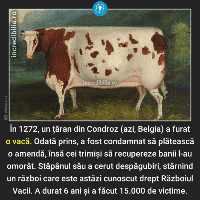 1431. razboiul vacii_128_red_compressed